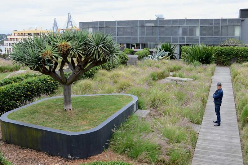 One of Australia's most iconic green roofs, the MC Central Apartments in Pyrmont.