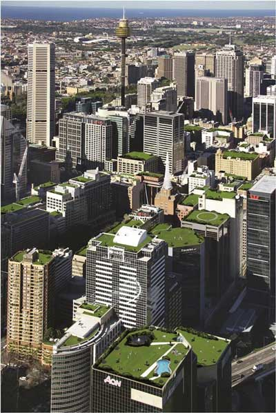 Is this the future of Sydney? Green roofs are becoming a vital part of city living.