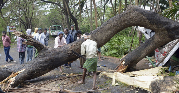 Indian men cut an uprooted tree from Cyclone Helen