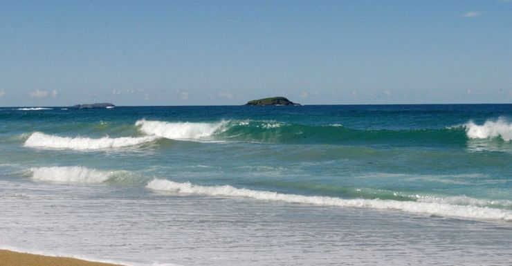 Coffs Harbour A local lifeguard said shark attacks in the area are rare.