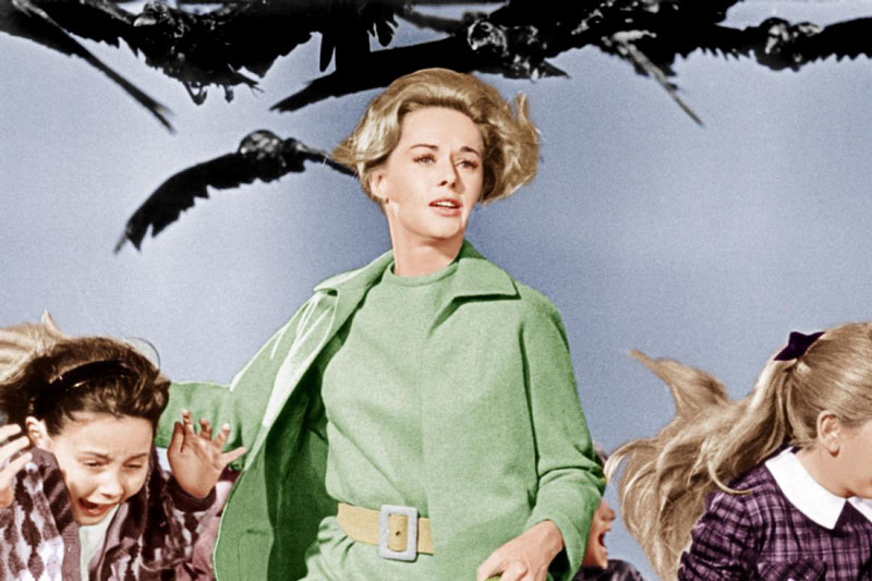 tippi-hedren-birds-1963