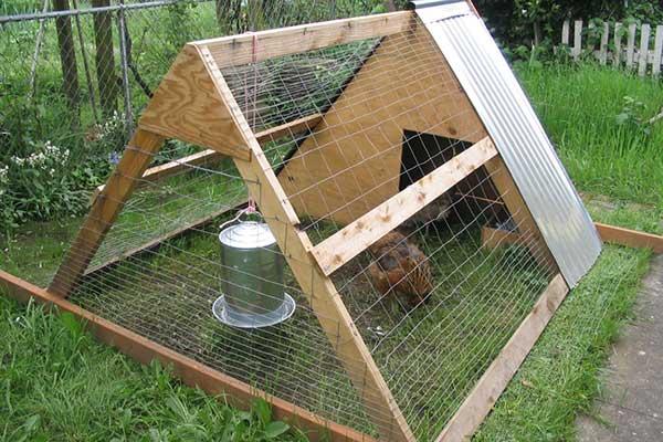 Chicken-coop-a-frame