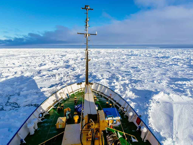 A cruise liner stuck in sheets of sea ice near Antarctica