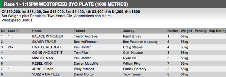 The field for Race 1 at Ascot on Saturday. Full fields and form available at http://www.risa.com.au/