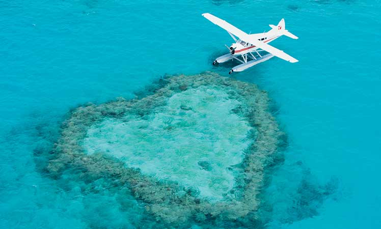 Heart Reef is known to millions.