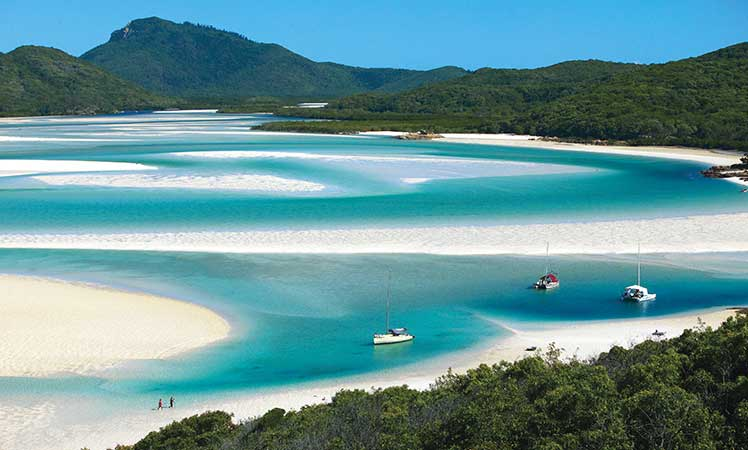 Whitehaven is one of the world's most iconic beaches.