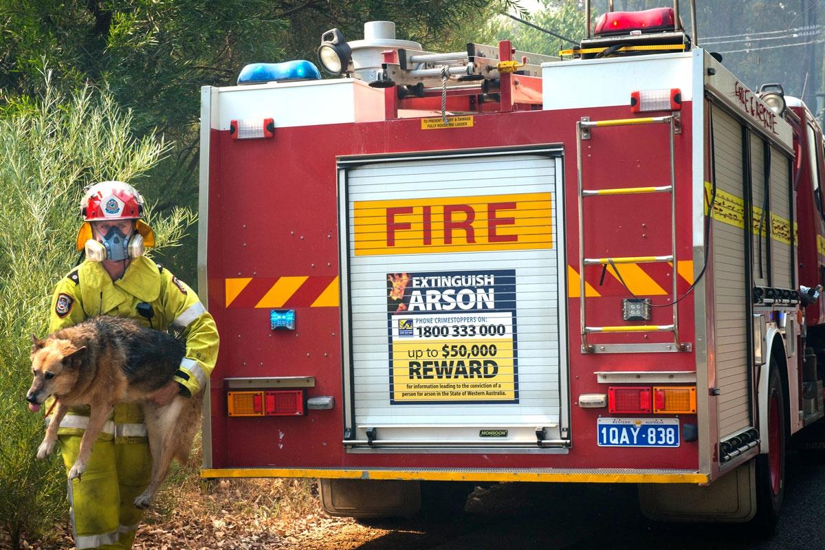Perth bushfire