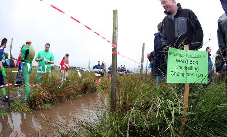 Bog-Snorkelling---Rud-Gr----CC