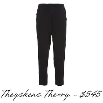 Theyskens-Theory-pants