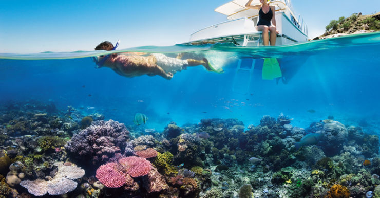 Holiday makers in the Great Barrier Reef