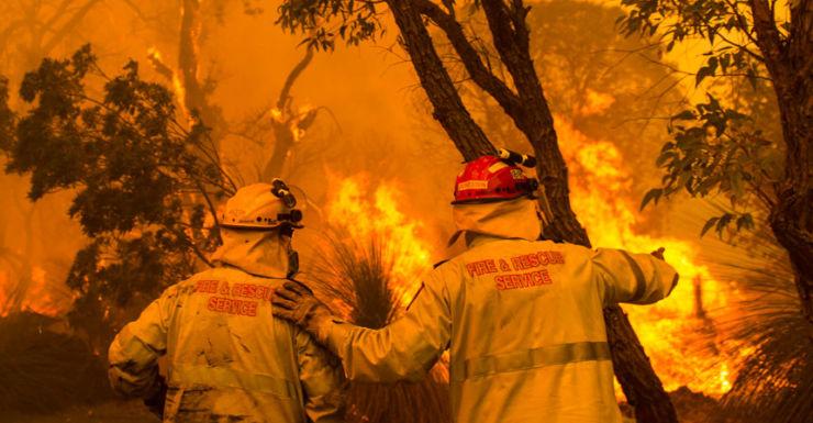 Firefighters in bushfire