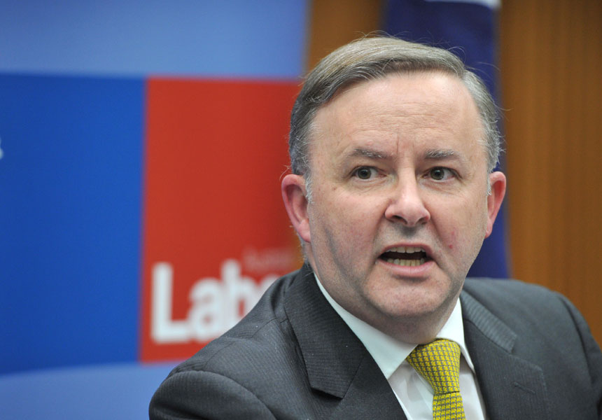 Labor must seek to reclaim the bush, Anthony Albanese says.