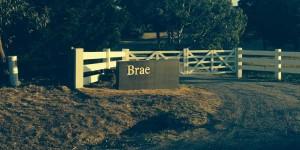 Dan Hunter's new restaurant Brae has received rave reviews.
