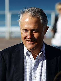 Macolm Turnbull