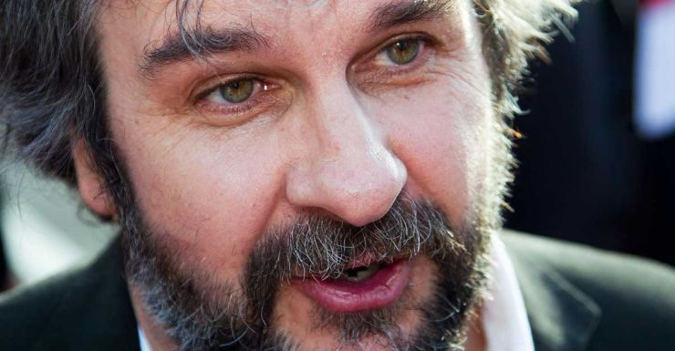 Peter Jackson's jet is helping in the search for the missing plane.