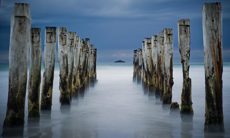Dunedin backs onto the Otago Peninsula.