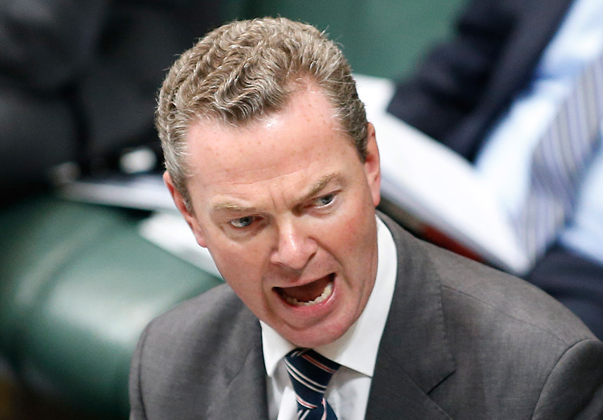 Chris Pyne