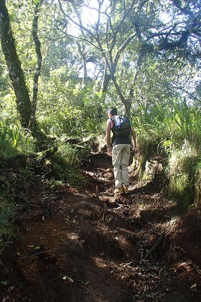 Tackling the early terrain. Picture: Joe Leech