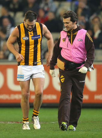 Hawthorn is sweating on the fitness of backman Brian Lake. Photo: Getty