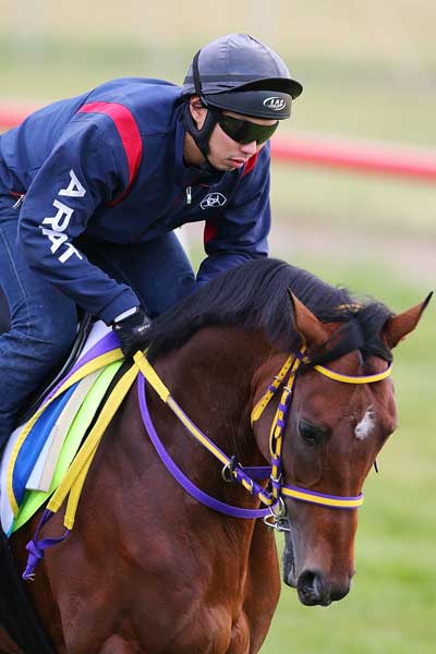 Admire Rakti works out at Werribee. Photo: Getty