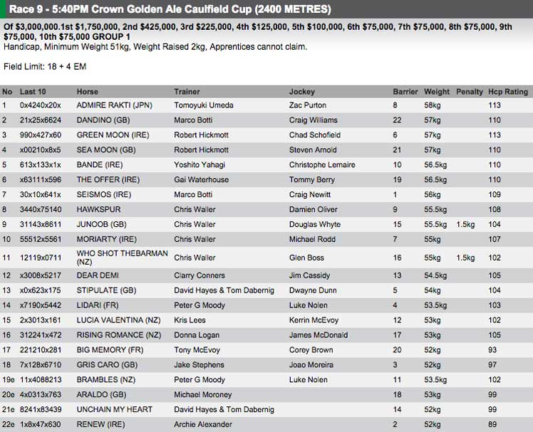 The full field for the Caulfield Cup. Photo: RISA