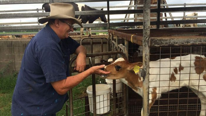 Federal Government to assist Australia's dairy farmers.