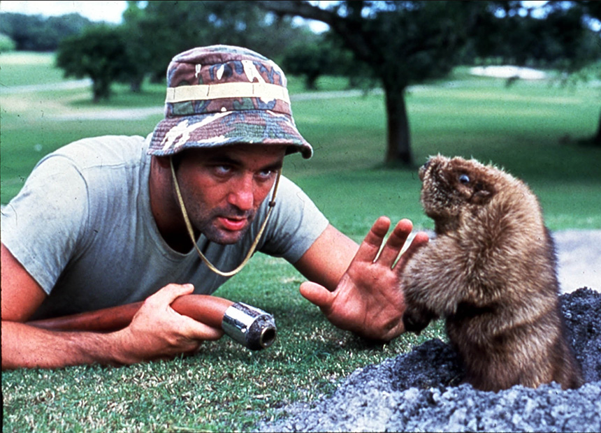 Young Bill Murray Caddyshack | www.imgkid.com - The Image ...