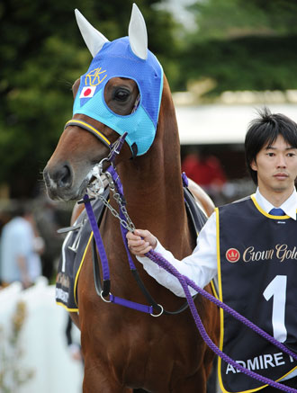 Admire Rakti from Japan is the horse to beat, Photo: Getty