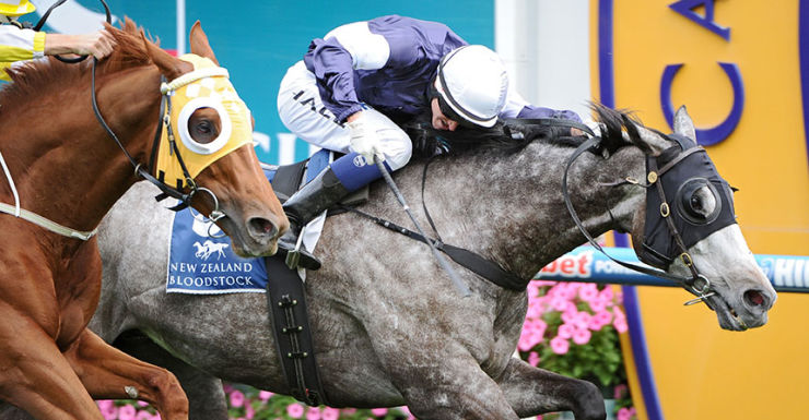 Fawkner wins the Caulfield Stakes.