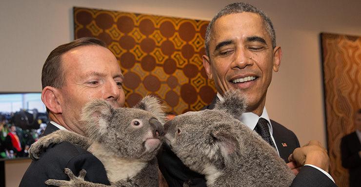 Tony Abbott and Barack Obama at G20