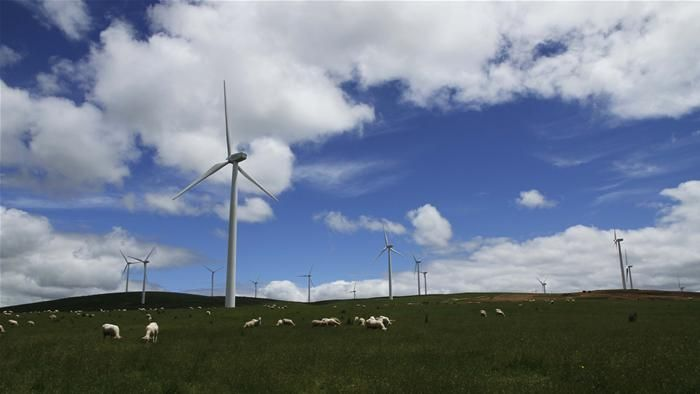 Some in the Coalition want to cut the current Renewable Energy Target by up to a third.