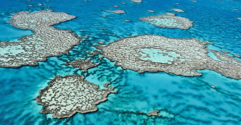 Queensland great barrier reef