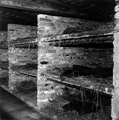 The beds at Auschwitz.