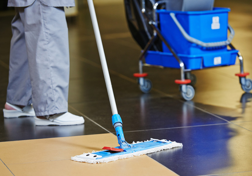 Cleaner with mop
