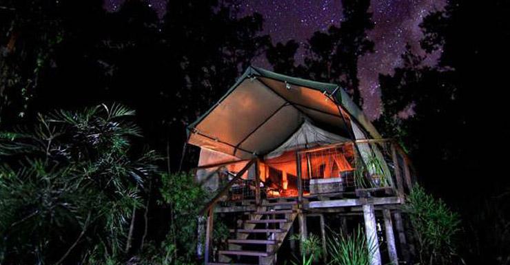 paperbark-camp-tent