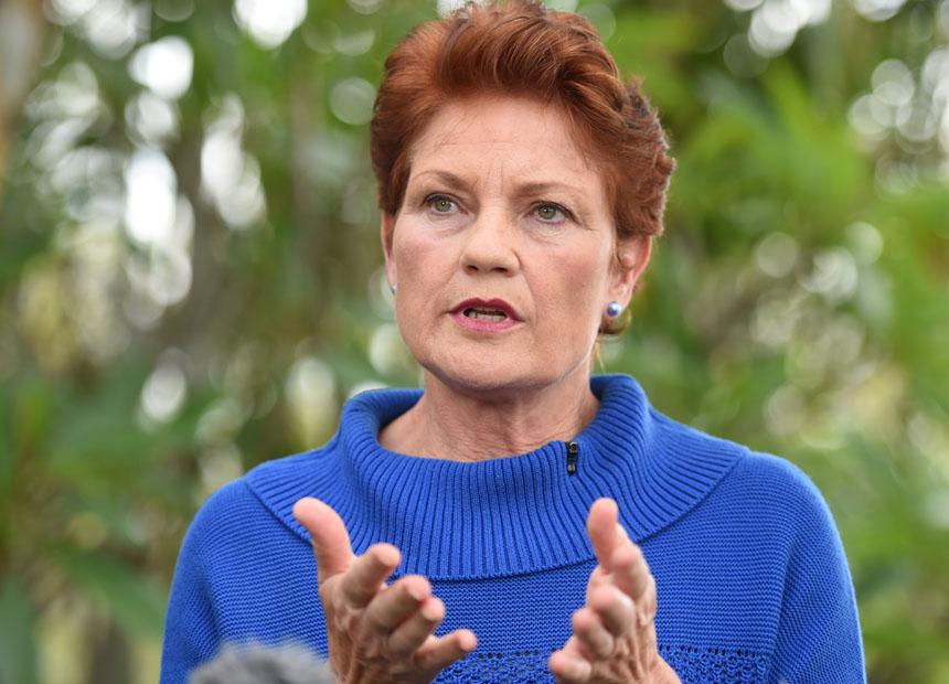 A Sydney Muslim group said Pauline Hanson's views were deeply offensive.
