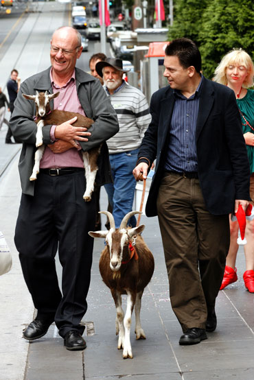 Walking a goat with Tim Costello in central Melbourne to promote a 'Presents Not Pokies' campaign in 2008. Photo: AAP