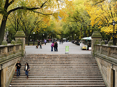 central-park-200215-newdaily