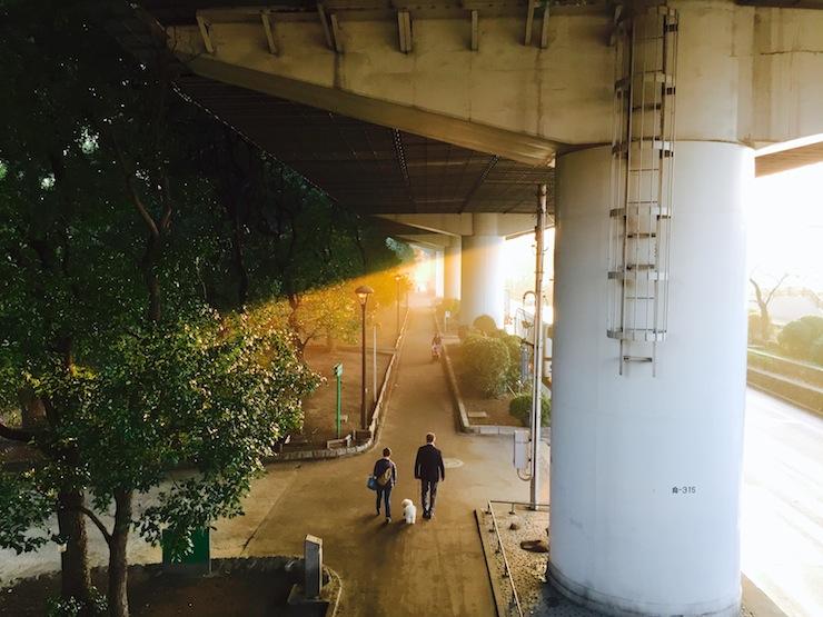 051_j.imaizumi