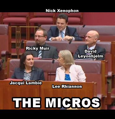 micros-no-vote
