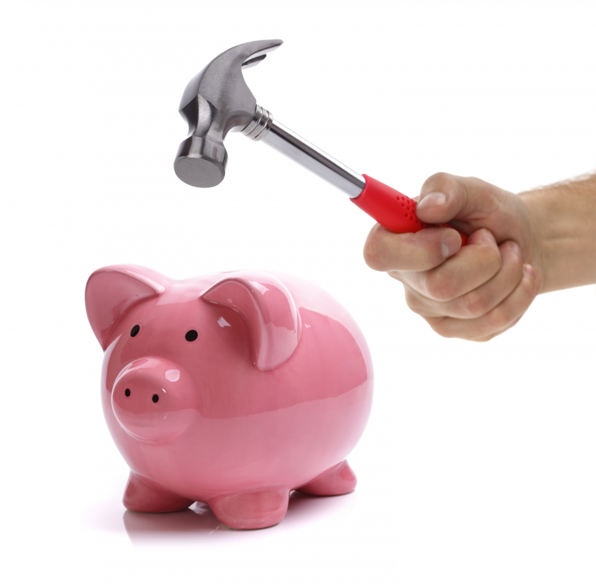 Raiding the piggy bank but counting on savings the new daily - Counting piggy bank ...