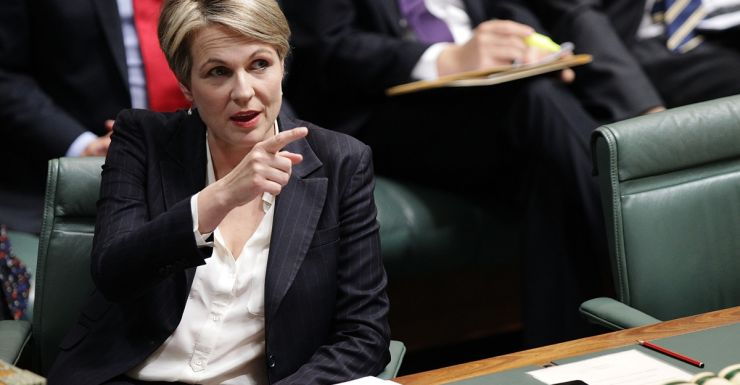 Ms Plibersek is has been a long time as a supporter of marriage equality.