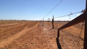 Local councils in drought-affected areas have welcomed the plan