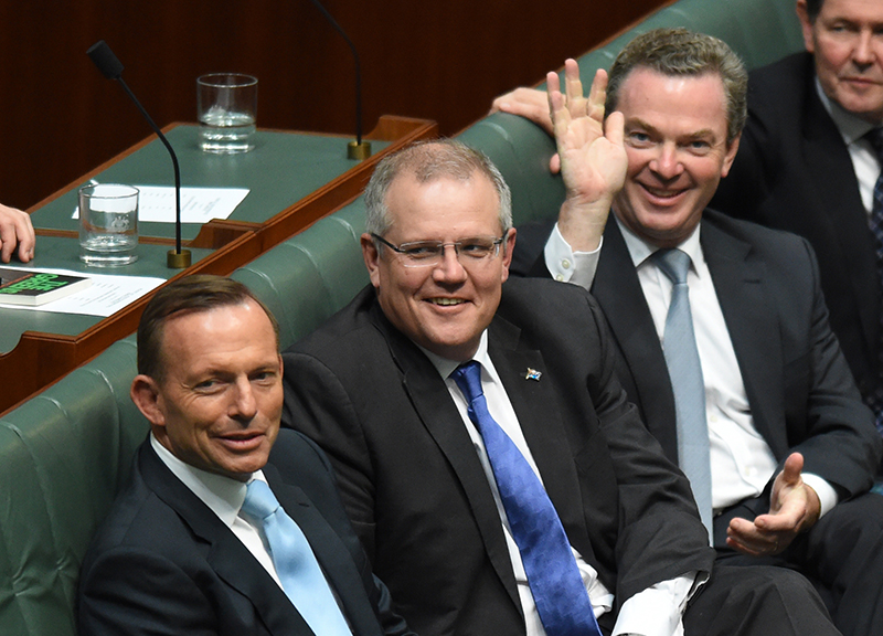 Scott Morrison, Tony Abbott, Christopher Pyne