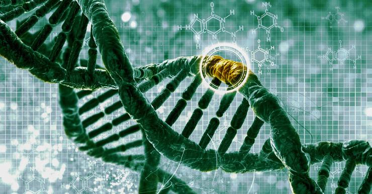 gene-editing-010415-newdaily