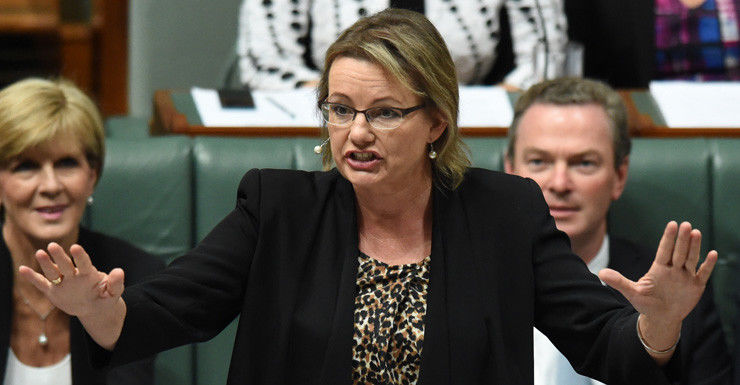Sussan Ley said the new package would include educating parents.