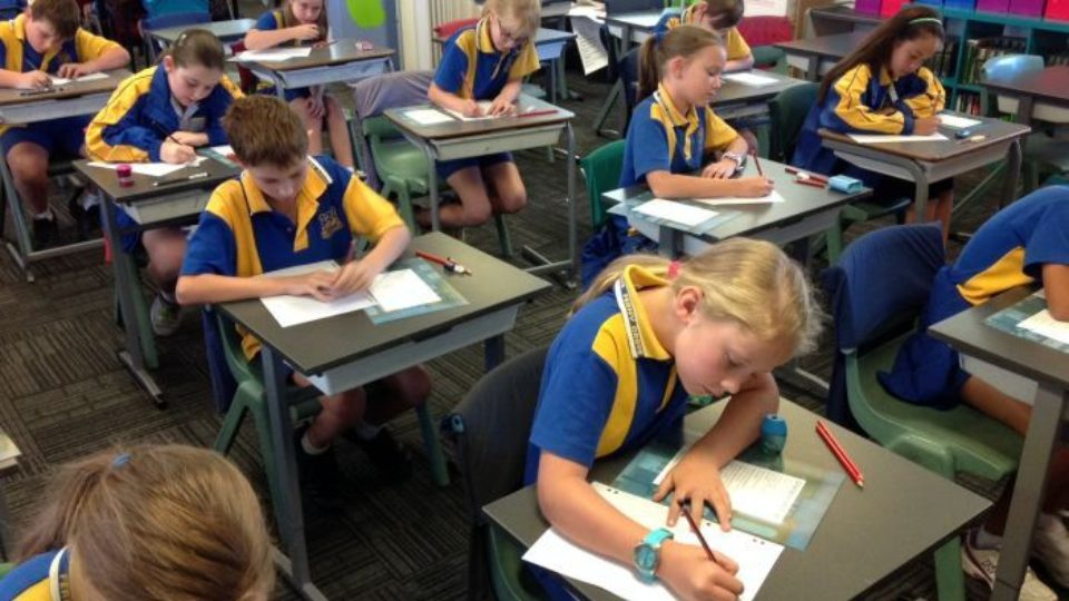 NAPLAN results reveal 'worrying' reading and writing scores