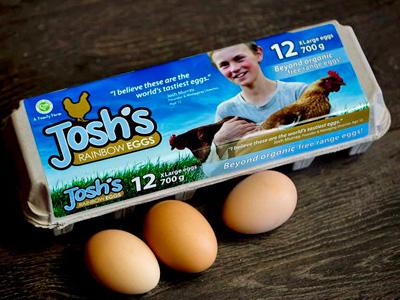 joshs-rainbow-eggs