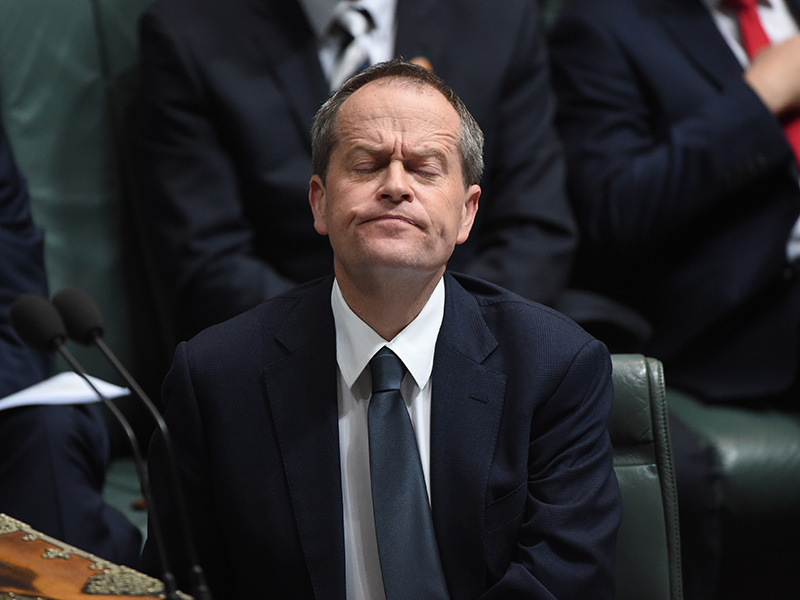 Bill Shorten supports gay marriage