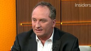Agriculture minister Barnaby Joyce speaks on Insiders, July 5 2015.